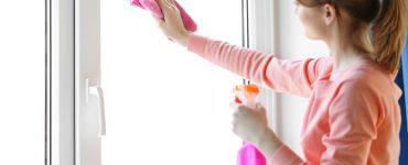 Was willst du putzen for Fenster putzen essig