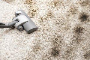 Teppich bzw. Teppichboden richtig reinigen - wie?