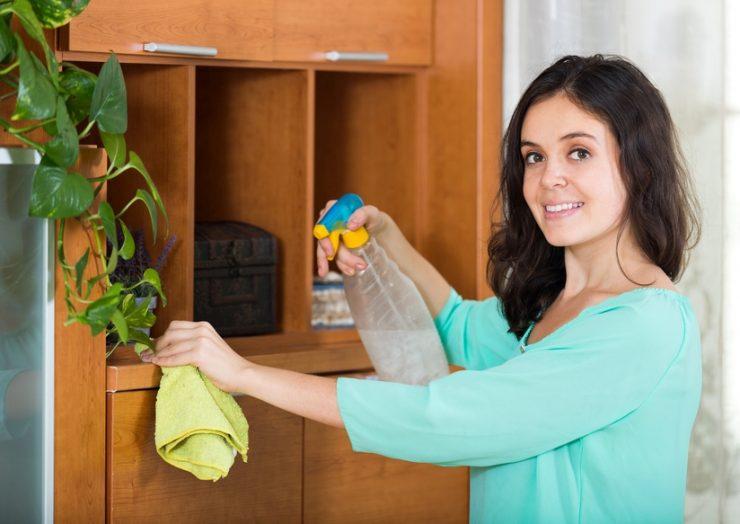 Möbelpflege Holzmöbel Reinigen Und Pflegen Wie Putzende