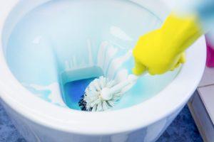 WC reinigen