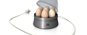 Eierkocher reinigen